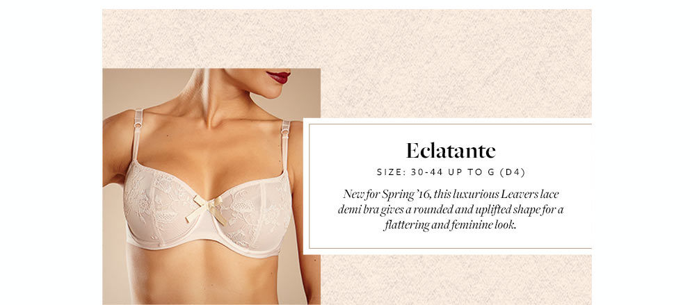 Eclatante by Chantelle
