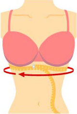 Bra Fitting Measure